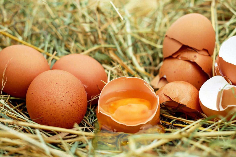 Pasta z jaj – jak zrobić ją samodzielnie?
